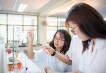 ngành dược học những gì